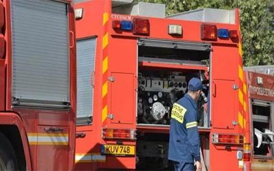 Πυροσβέστες από Βόλο και Αλμυρό στην Κάρυστο