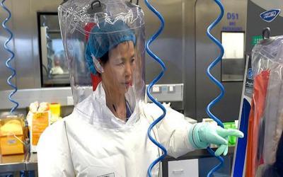 H «bat woman» ιολόγος της Κίνας προειδοποιεί: Ο κορωνοϊός είναι η «κορυφή του παγόβουνου» άγνωστων φονικών ιών