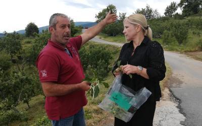 Ολοκληρωτική καταστροφή καλλιεργειών από τη χαλαζόπτωση στη Ζαγορά – Περιοδεία  Δ. Κολυνδρίνη