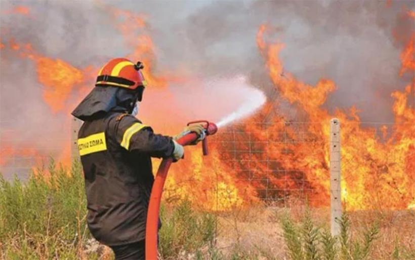 Φωτιά στη Νεράϊδα Αλμυρού έκαψε πουρνάρια και ξερά χόρτα