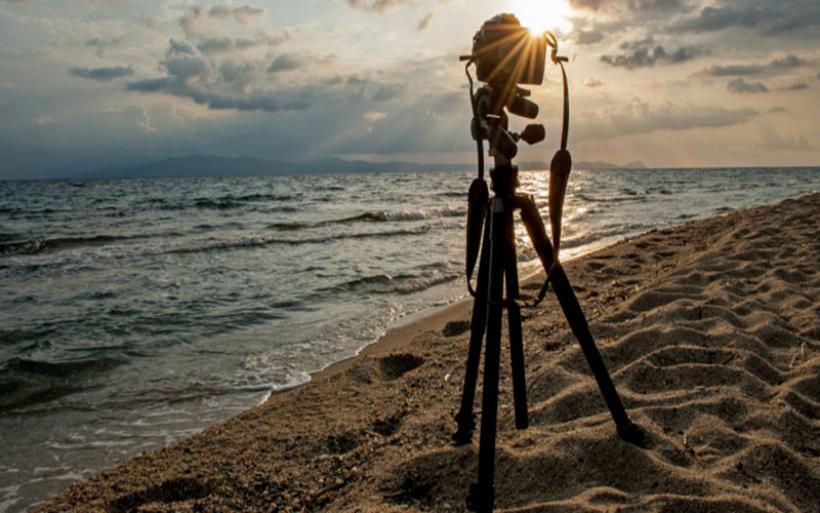 Τα νερά του νοτίου Αιγαίου «επιλέγουν» οι αγγελοκαρχαρίες