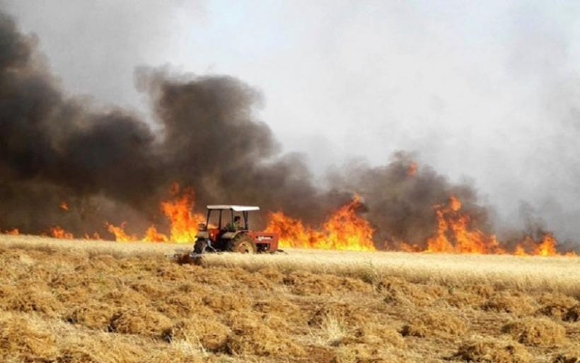 Πως θα χορηγείται η αποζημίωση στις αγροτικές εκμεταλλεύσεις που επλήγησαν από τις πυρκαγιές