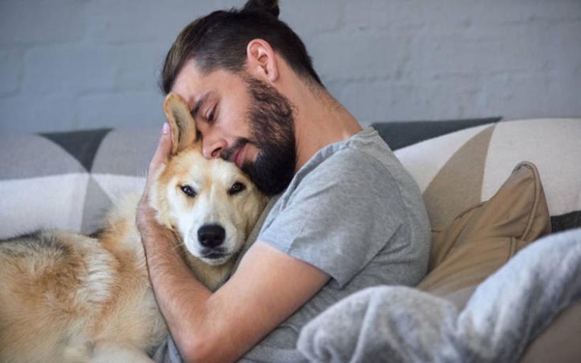 Νέος νόμος για τα ζώα συντροφιάς: Οι υποχρεώσεις των ιδιοκτητών και τα πρόστιμα